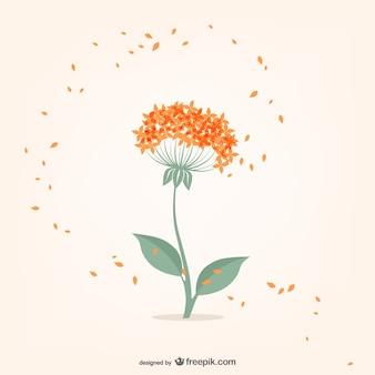Minimale bloem met oranje kleine bloemblaadjes