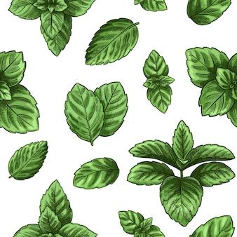 Mint naadloos patroon