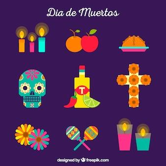 Modern pak kleurrijke mexicaanse elementen