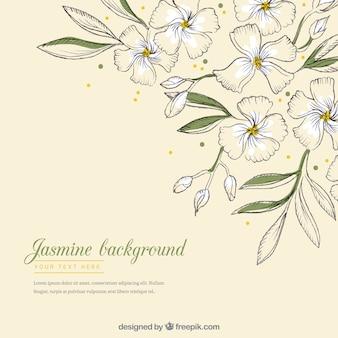 Moderne achtergrond met hand getrokken jasmijn