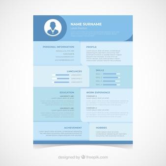 Moderne curriculummalplaatje met vlak ontwerp