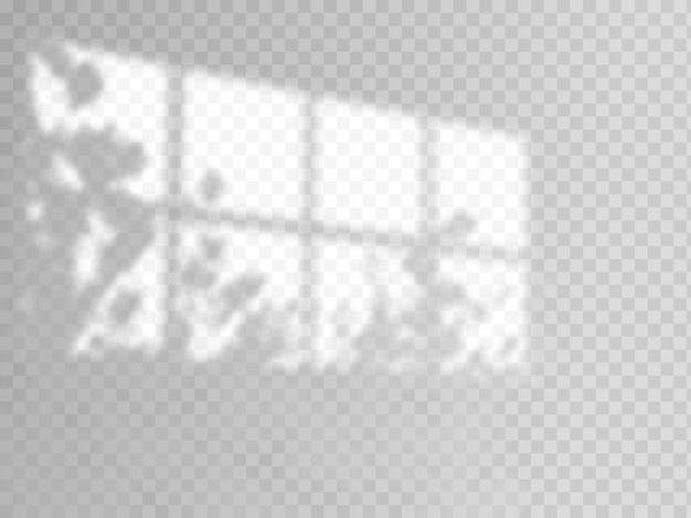 Moderne schaduwoverlay, geweldig ontwerp voor elk doel. wazige zachte schaduw van het raam en takken van planten buiten het raam. natuurlijke schaduwen geïsoleerd op transparante achtergrond.