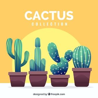 Moderne set van leuke cactussen