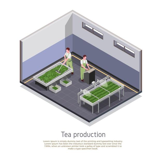 Moderne theeproductie faciliteit isometrische samenstelling illustratie
