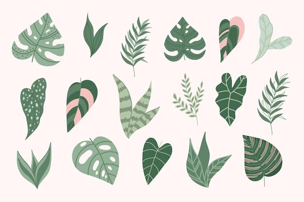 Moderne touwachtige bladeren. botanische elementen. jungle bladeren