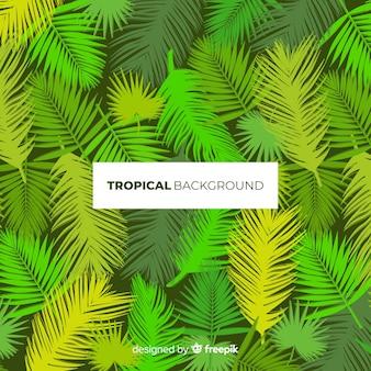 Moderne tropische bladerenachtergrond