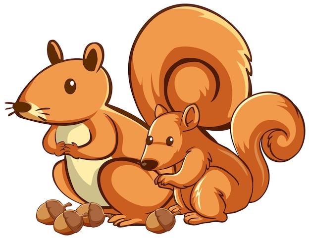 Moeder en baby eekhoorn cartoon op witte achtergrond
