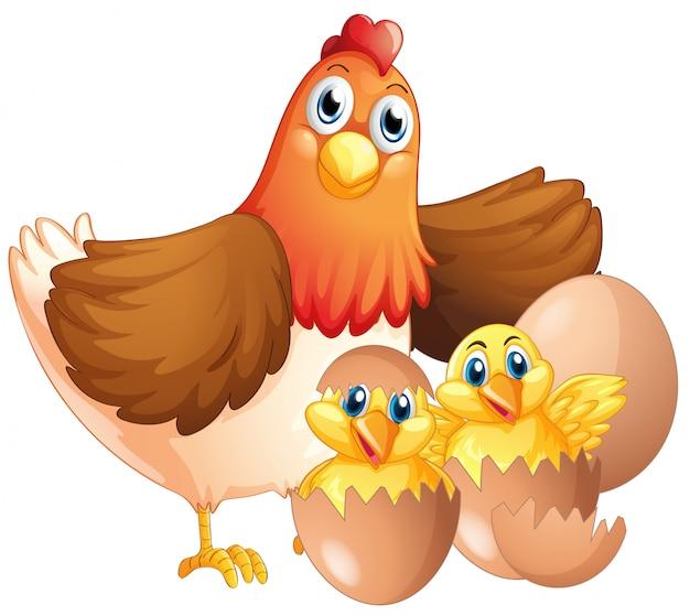 Moeder kip en twee kuikens