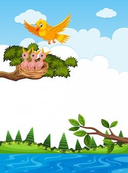 Moedervogel voedende kuikens