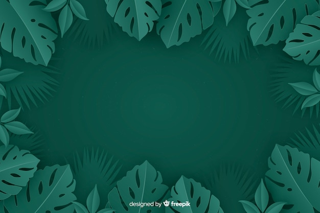 Monochrome achtergrond met monstera plant