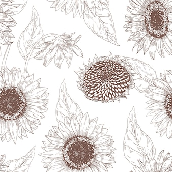 Monochroom naadloze bloemmotief met zonnebloemkoppen
