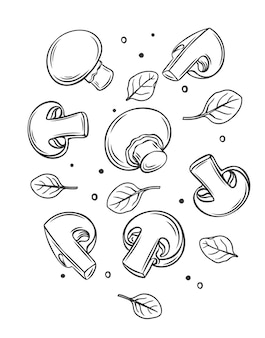 Monochroom rauwe champignons en basilicum bladeren schetsen illustratie