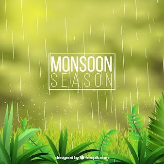 Monsoon wazige achtergrond met de natuur