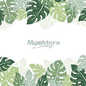 Monstera verlaat lente achtergrond natuur trendy stijl
