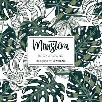 Monstera vertrekt
