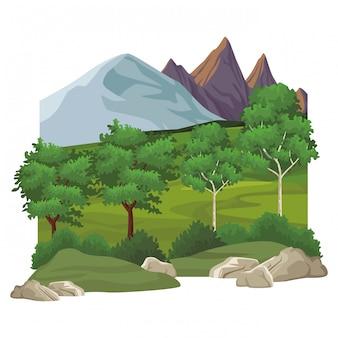 Mooi landschapslandschap