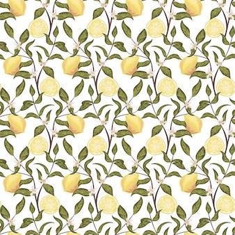 Mooi naadloos patroon met citroenen, bloemen en tak. kleurrijke handgetekende vectorillustratie
