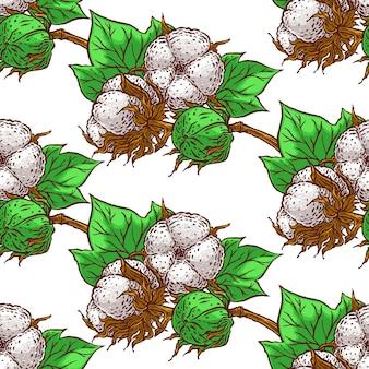 Mooi naadloos patroon van katoentakken. handgetekende illustratie