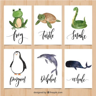 Mooi pakket kaarten met aquarel dieren