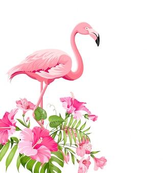 Mooi tropisch beeld met roze flamingo en plumeriabloemen.