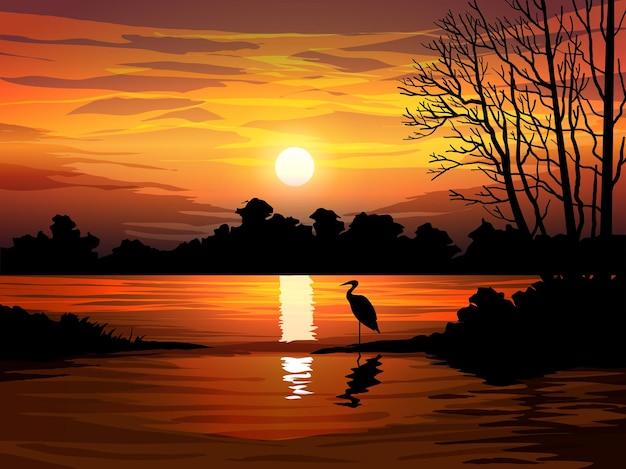 Mooi zonsonderganglandschap bij meer met bos