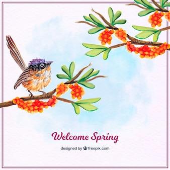 Mooie achtergrond van de vogel en takken met aquarel bloemen