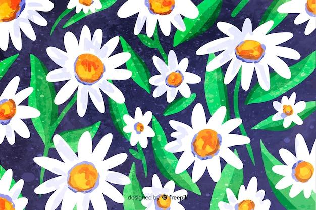 Mooie aquarel daisy bloem achtergrond