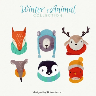 Mooie aquarel dieren met de winter accessoires