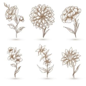 Mooie artistieke bloemenreeks