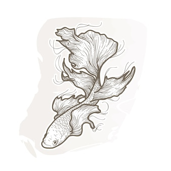 Mooie betta vissen illustratie