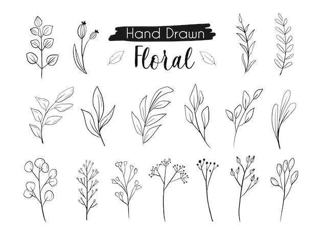 Mooie bloem gebladerte lijntekeningen hand tekenen
