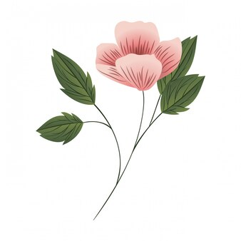 Mooie bloem met bladeren geïsoleerde pictogram