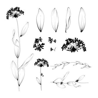 Mooie bloemenachtergrond. elementen voor ontwerp