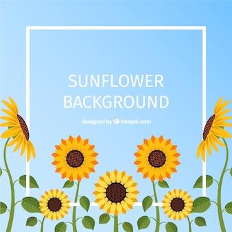Mooie bloemenachtergrond met vlak ontwerp