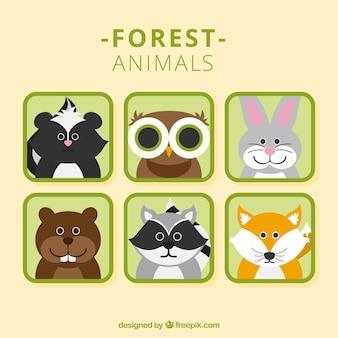 Mooie bos dierlijke avatars