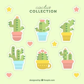 Mooie cactus met plat ontwerp