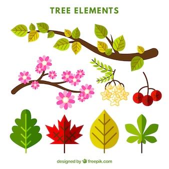Mooie collectie met elementen van een boom