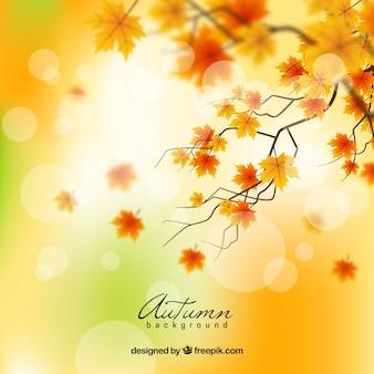 Mooie de herfstachtergrond met realistisch ontwerp