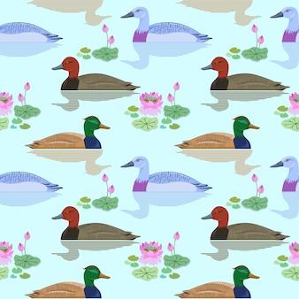 Mooie eend die in vijver van lotusbloembloemenpatroon zwemt.