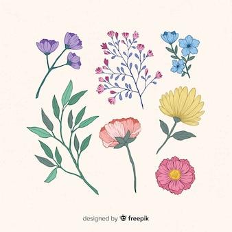Mooie hand getrokken bloemeninzameling