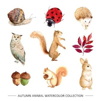 Mooie herfst illustratie met waterverf voor decoratief gebruik.