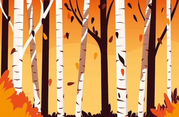 Mooie herfst landschap scène met bomen