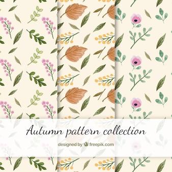 Mooie herfst patroon collectie