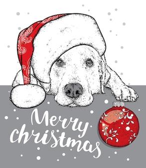 Mooie hond in een kerstmuts