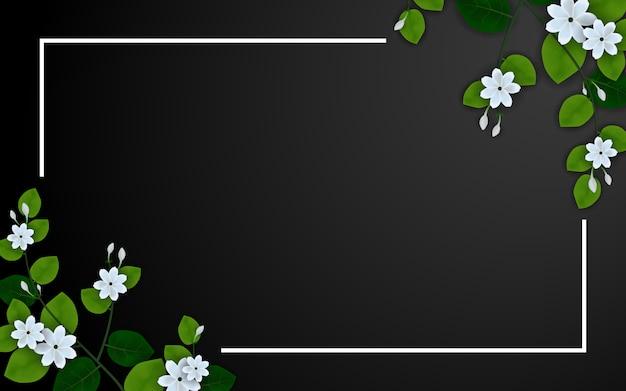 Mooie jasmijnbloem op zwart