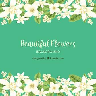 Mooie jasmijnbloemen met handgetekende stijl