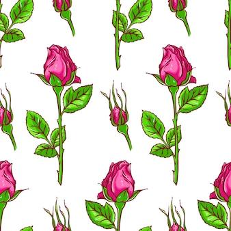 Mooie kleurrijke naadloze achtergrond van roze rozen op een witte achtergrond. handgetekende illustratie