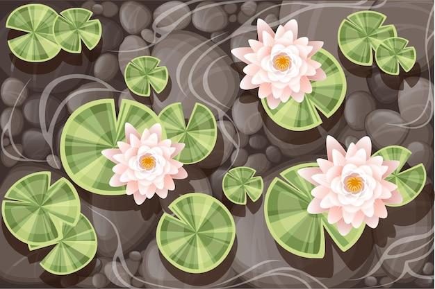 Mooie lelie lotus met groene bladeren op transparant water en stenen bodem platte vectorillustratie.
