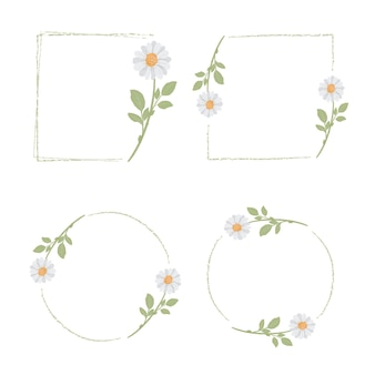 Mooie minimale witte margriet bloemenkadercollectie
