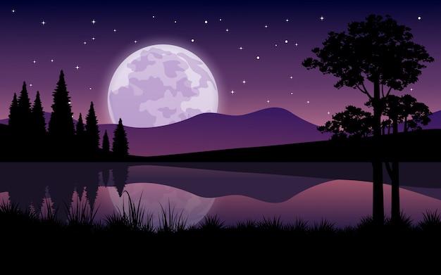 Mooie nacht bij meer met stijgende volle maan en sterrenhemel
